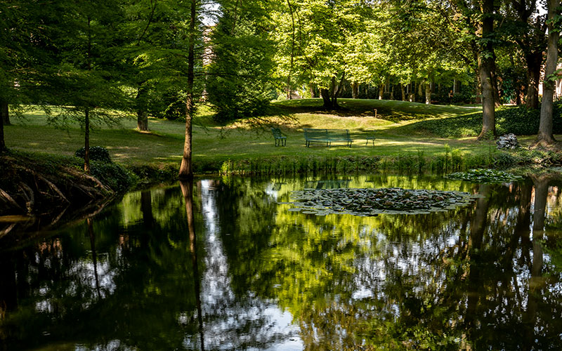 Villa Malaspina: the park with lake.