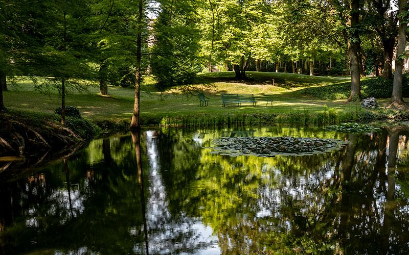 Parco di Villa Malaspina, il laghetto con ninfee.