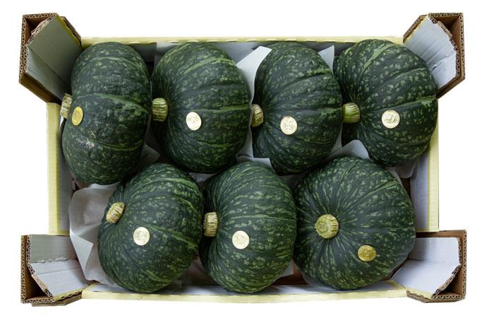 I frutti del Conte Guarienti. Le zucche